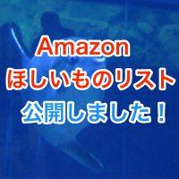 Amazonのほしいものリストを公開してみました!